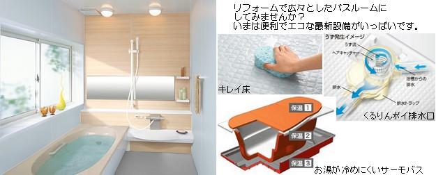 re.bathroom.jpg